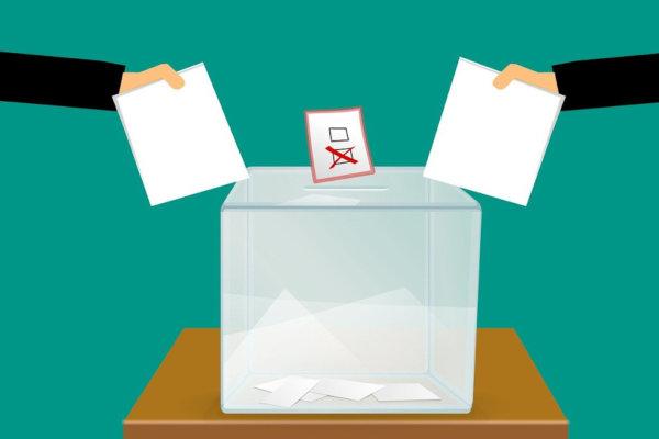 Infos zu den Wahlen
